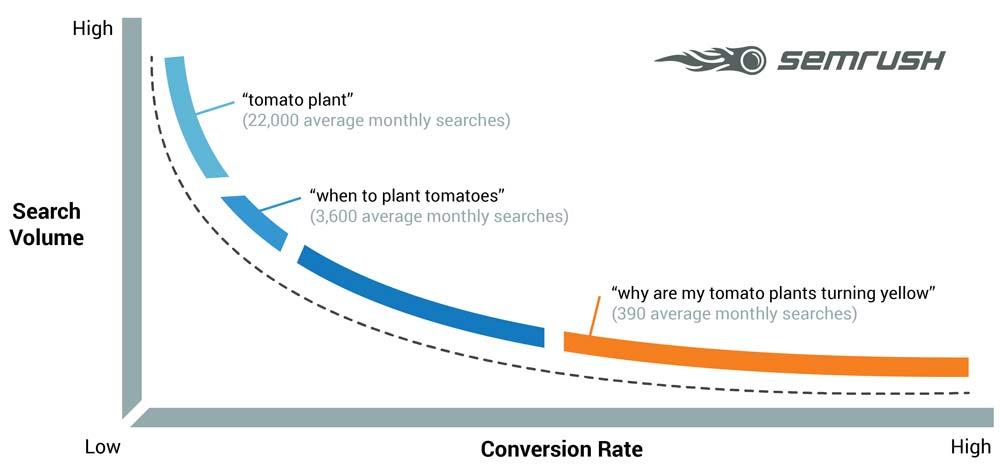 SEMrush Graph on Long Tail Keywords